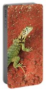 Geico Portable Battery Charger