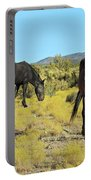 Gems Of Cold Creek Portable Battery Charger