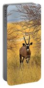 Gemsbok Standoff Portable Battery Charger
