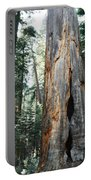 General Grant Grove Sequoia Portable Battery Charger