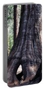 General Grant Grove Sequoia Window Portable Battery Charger