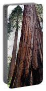 General Grant Grove Streaming Light Portable Battery Charger