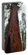 General Sherman Tree Portrait Portable Battery Charger
