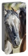Gentle Face Of A Wild Horse Portable Battery Charger