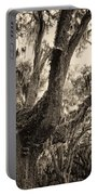Georgia Live Oaks And Spanish Moss In Sepia Portable Battery Charger