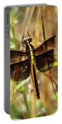 Georgia On My Mind Ray Charles Dragonfly Art Portable Battery Charger