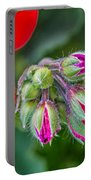 Geranium Portable Battery Charger