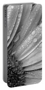 Gerbera Daisy After The Rain 2 Portable Battery Charger