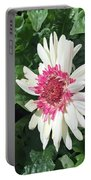 Gerbera Daisy And Bud Portable Battery Charger