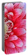 Gerbera Texture Portable Battery Charger