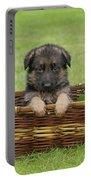 German Shepherd Puppy In Basket Portable Battery Charger by Sandy Keeton