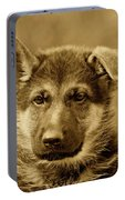 German Shepherd Puppy In Sepia Portable Battery Charger