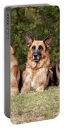 German Shepherds - Family Portrait Portable Battery Charger