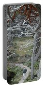 Ghost Trees Portable Battery Charger