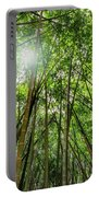 Giant Bamboo In Forest With Sunflare Portable Battery Charger