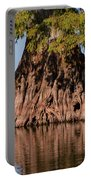 Giant Cypress Tree In Reelfoot Lake Portable Battery Charger