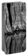 Giant Cypress Tree Trunk And Reflection 2 Portable Battery Charger