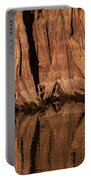 Giant Cypress Tree Trunk And Reflection Portable Battery Charger