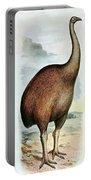 Giant Moa Dinornis Ingens, Cenozoic Bird Portable Battery Charger