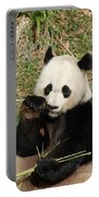 Giant Panda Bear Holding On To Bamboo While Eating Portable Battery Charger