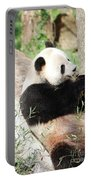 Giant Panda Bear Leaning Against A Tree Trunk Eating Bamboo Portable Battery Charger