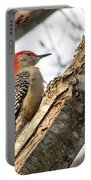 Giant Red Headed Woodpecker  Portable Battery Charger