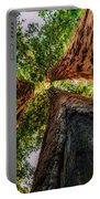Giant Sequoia Sunset Portable Battery Charger