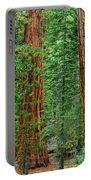 Giant Sequoias Sequoiadendron Gigantium Yosemite Np Ca Portable Battery Charger