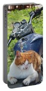 Ginger And White Tabby Cat Sunbathing On A Motorcycle Portable Battery Charger