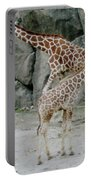 Giraffe And Baby  Portable Battery Charger