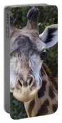 Giraffe Looking At You Portable Battery Charger