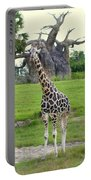 Giraffe With African Baobob Tree Portable Battery Charger