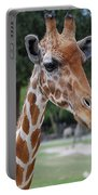 Giraffe Youth Portable Battery Charger