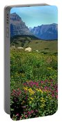 Glacier Blooms Portable Battery Charger