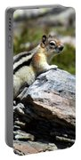 Glacier Mountain Chipmunk Portable Battery Charger