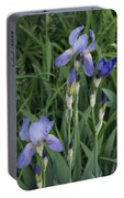 Glads Portable Battery Charger