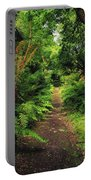 Glanleam, Co Kerry, Ireland Pathway Portable Battery Charger