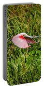 Gliding Spoonbill In Bayou Portable Battery Charger
