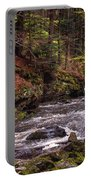 Glimpses Of Spring  Portable Battery Charger