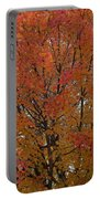 Glorious Autumn Portable Battery Charger