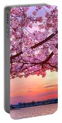 Glorious Sunset Over Cherry Tree At The Jefferson Memorial  Portable Battery Charger