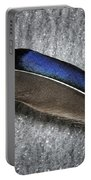 Glossy Iridescence  Portable Battery Charger