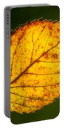 Glowing Autumn Leaf Portable Battery Charger