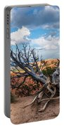 Gnarly - Bryce Canyon Portable Battery Charger