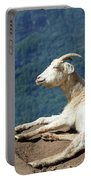 Goat Enjoy The Sun Portable Battery Charger
