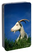 Goat Portable Battery Charger