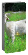 Goat Portrait  Portable Battery Charger