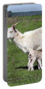 Goat With Just Born Little Goat Spring Scene Portable Battery Charger
