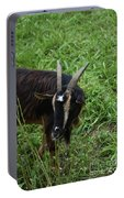 Goat With Long Horns In A Grass Field Portable Battery Charger
