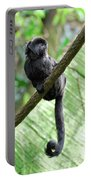 Goeldi Marmoset Perched On A Vine Portable Battery Charger